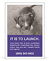 Pit bull puppy. Ad Template