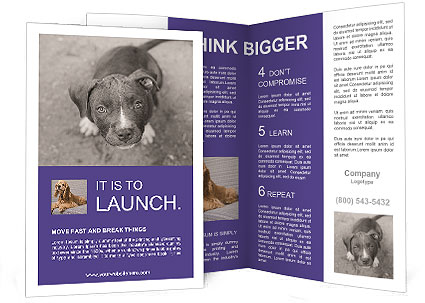 Pit bull puppy. Brochure Templates