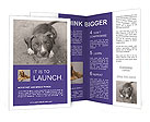 Pit bull puppy. Brochure Template