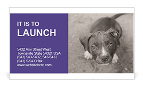 Pit bull puppy. Business Card Templates
