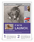 Pit bull puppy. Flyer Template