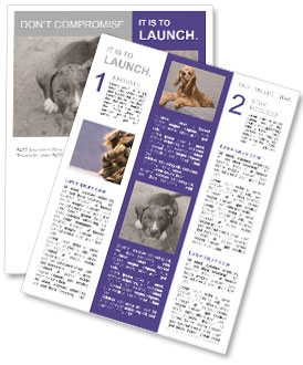 Pit bull puppy. Newsletter Template