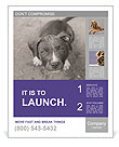 Pit bull puppy. Poster Template