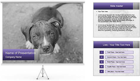 Pit bull puppy. PowerPoint Template