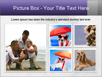 Pit bull puppy. PowerPoint Template - Slide 19