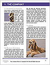 Pit bull puppy. Word Template - Page 3
