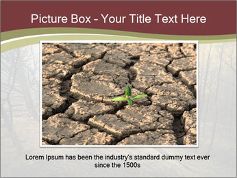 Beautiful Wlderness PowerPoint Templates - Slide 16