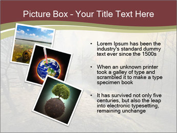 Beautiful Wlderness PowerPoint Templates - Slide 17