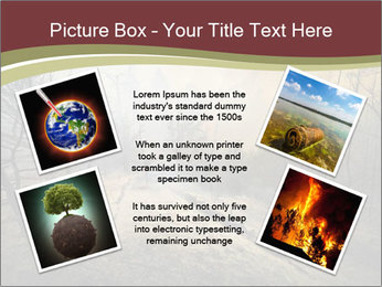 Beautiful Wlderness PowerPoint Templates - Slide 24