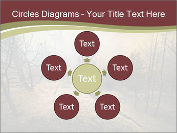 Beautiful Wlderness PowerPoint Templates - Slide 78