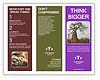 0000089425 Brochure Templates