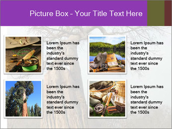 Huge Baobab PowerPoint Templates - Slide 14