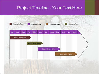 Huge Baobab PowerPoint Templates - Slide 25
