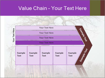 Huge Baobab PowerPoint Templates - Slide 27