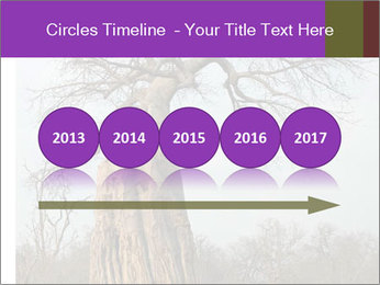 Huge Baobab PowerPoint Templates - Slide 29