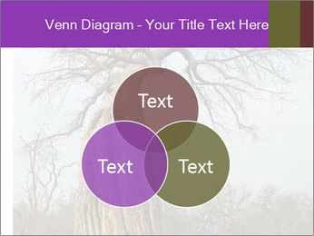 Huge Baobab PowerPoint Templates - Slide 33