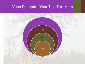 Huge Baobab PowerPoint Templates - Slide 34