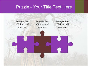 Huge Baobab PowerPoint Templates - Slide 42