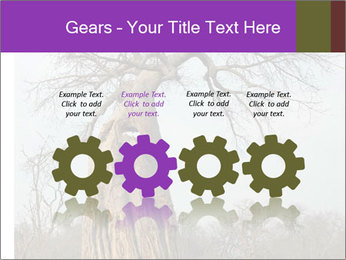 Huge Baobab PowerPoint Templates - Slide 48