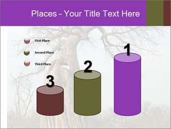 Huge Baobab PowerPoint Templates - Slide 65