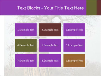 Huge Baobab PowerPoint Templates - Slide 68