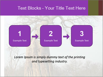 Huge Baobab PowerPoint Templates - Slide 71