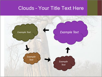 Huge Baobab PowerPoint Templates - Slide 72
