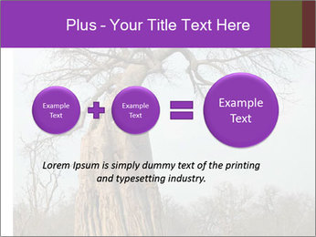 Huge Baobab PowerPoint Templates - Slide 75