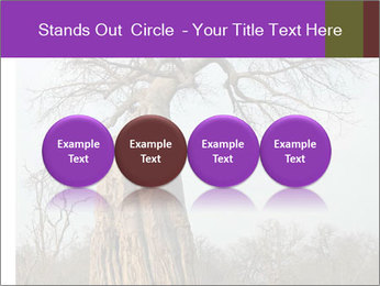 Huge Baobab PowerPoint Templates - Slide 76
