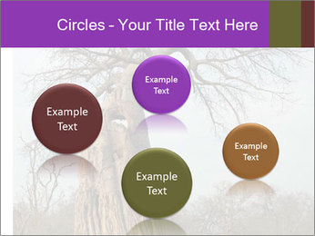 Huge Baobab PowerPoint Templates - Slide 77