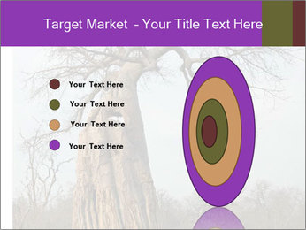 Huge Baobab PowerPoint Templates - Slide 84