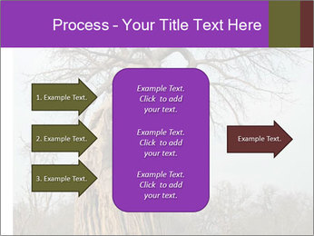 Huge Baobab PowerPoint Templates - Slide 85