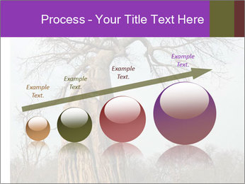 Huge Baobab PowerPoint Templates - Slide 87