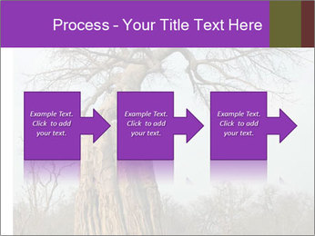 Huge Baobab PowerPoint Templates - Slide 88