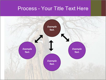 Huge Baobab PowerPoint Templates - Slide 91