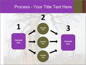 Huge Baobab PowerPoint Templates - Slide 92