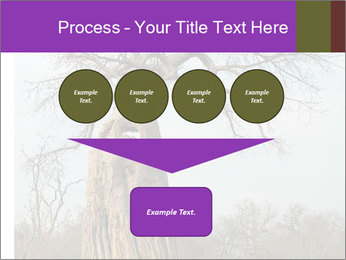 Huge Baobab PowerPoint Templates - Slide 93