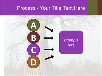 Huge Baobab PowerPoint Templates - Slide 94