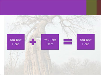 Huge Baobab PowerPoint Templates - Slide 95