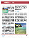 0000089429 Word Template - Page 3
