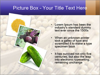 Raw Soyabeans PowerPoint Templates - Slide 17