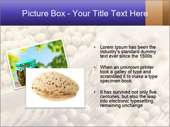 Raw Soyabeans PowerPoint Templates - Slide 20