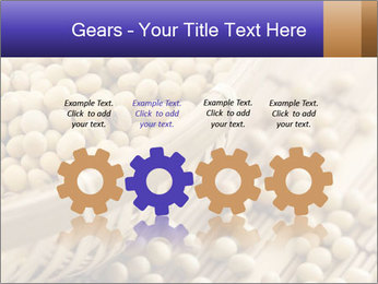 Raw Soyabeans PowerPoint Templates - Slide 48