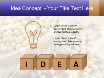 Raw Soyabeans PowerPoint Templates - Slide 80