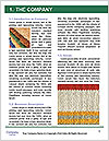 0000089438 Word Templates - Page 3