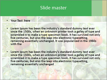 Vegetables Cultivation PowerPoint Template - Slide 2