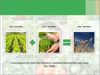 Vegetables Cultivation PowerPoint Template - Slide 22