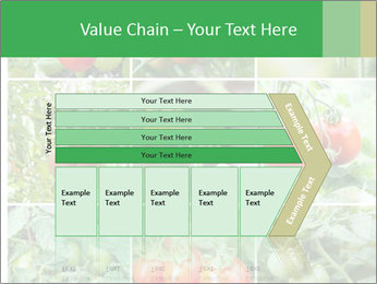 Vegetables Cultivation PowerPoint Template - Slide 27
