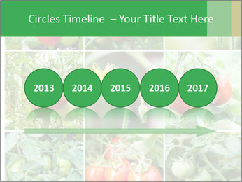 Vegetables Cultivation PowerPoint Template - Slide 29