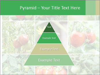 Vegetables Cultivation PowerPoint Template - Slide 30
